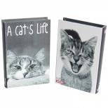 Caixa Livro  A Cat's Life - Urban